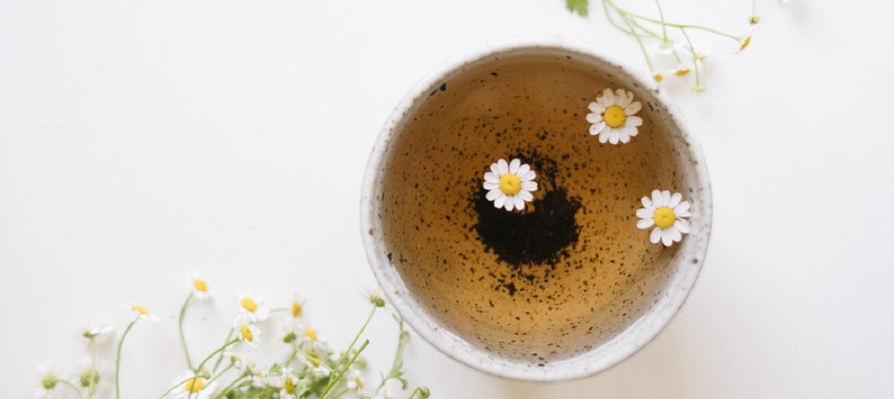 Les 6 meilleures tisanes pour traiter les migraines