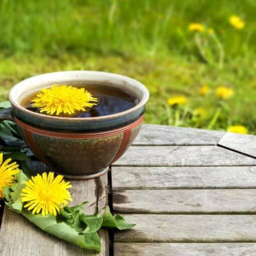 5 bienfaits de la tisane de racine de pissenlit (+ comment la préparer)