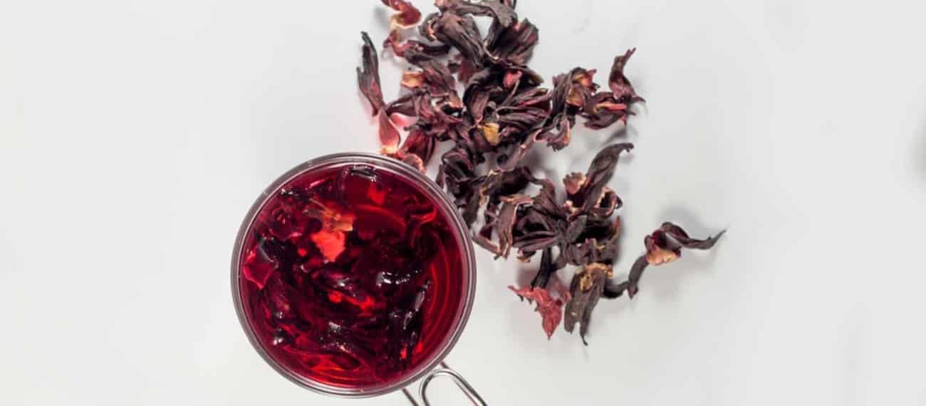 tisane hibiscus
